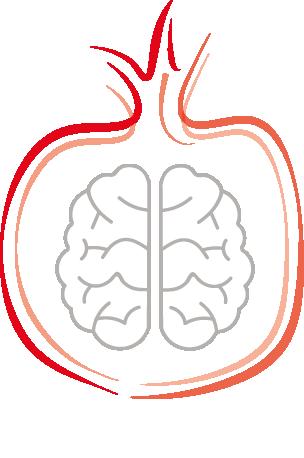 Ratiocibus – Il lato razionale dell'alimentazione Logo